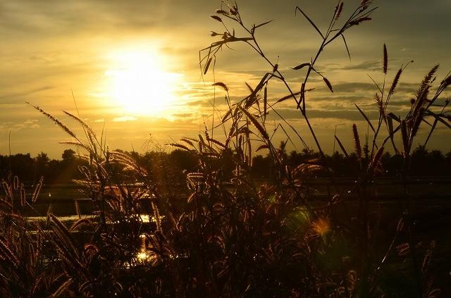 チャチュンサオの夕陽