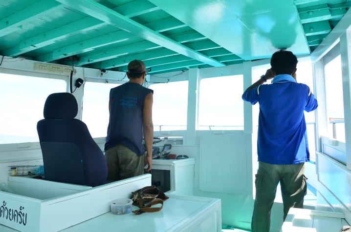 bangkok-whalewatching10