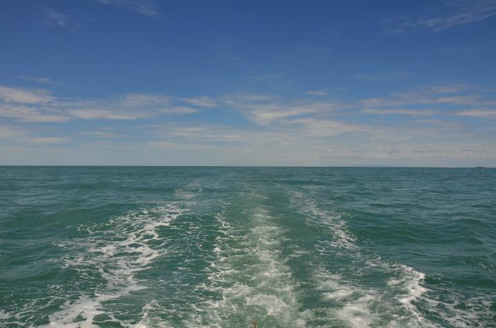 bangkok-whalewatching8